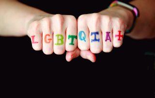 Zwei nach vorn gestreckte Fäuste, auf denen LGBTQIA steht